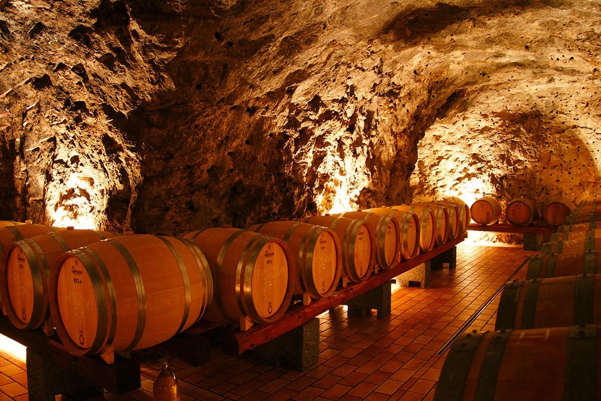 Marisa Cuomo alla Monza Wine Experience